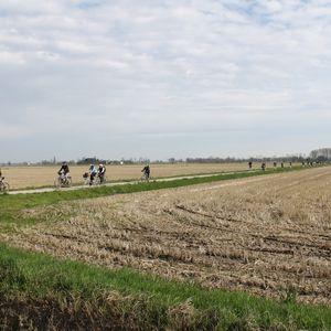 La campagna coltivata del territorio di Noviglio
