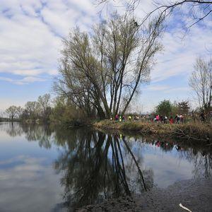 Lago Mulino di Cusico a Zibido San Giacomo